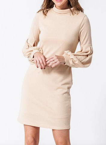 Balloon Sleeve Dress