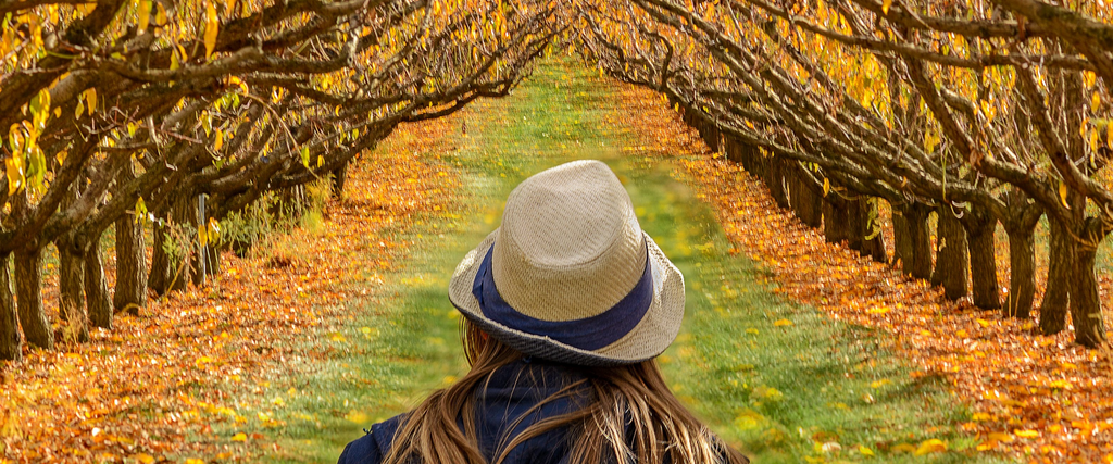girl walking by autumn trees