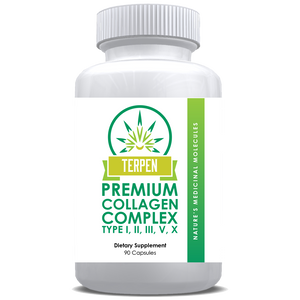 Collagen Complex (I,II,III,V,X) - 500mg