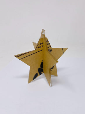 3D Acrylic Christmas Star Ornament - Frosted