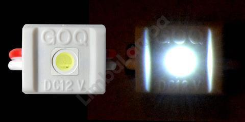 GOQ 1 White 5050 1 Chip Modul Led Red