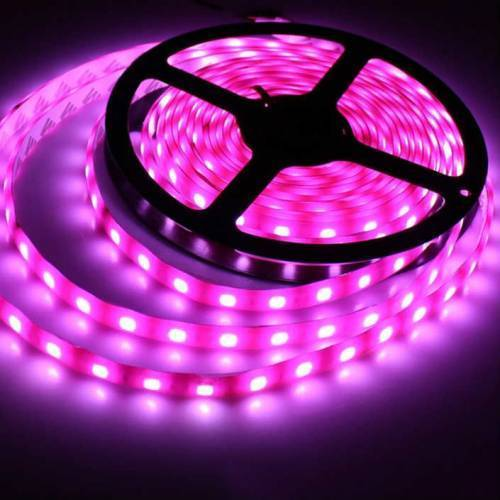 DCLED 2835 Tek Chips 6W/m Outdoor Strip Led Pink 1 Meter (39'')