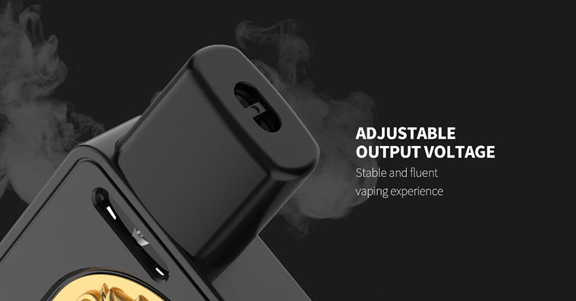 QUIZZ Roark Pod System VW Starter Kit 700mAh 1.2ml Adjustable Output Voltage