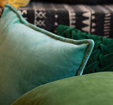Load image into Gallery viewer, Velvet Throw Pillows