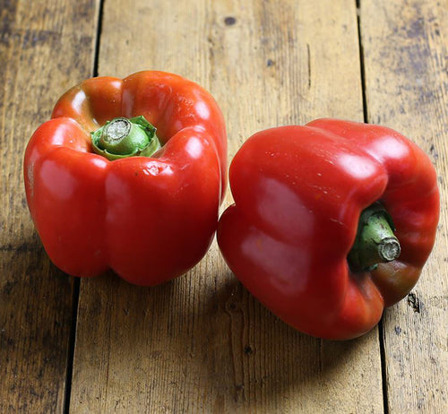 Capsicum - Red (each)