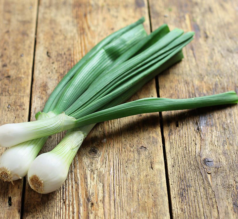 Spring Onion - Bunch