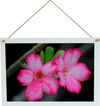 Wood hanging Photo sign 12x8