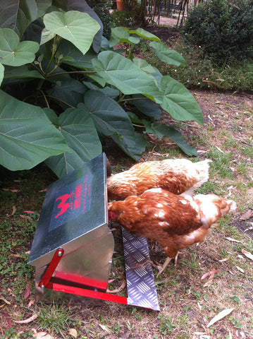 Red Comb Chook Feeder $146 + P&H