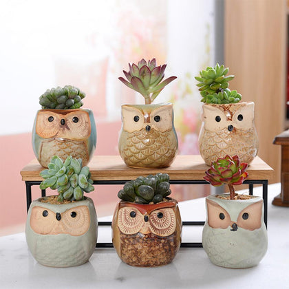 6 Pcs Ceramic Owl Flower Pots
