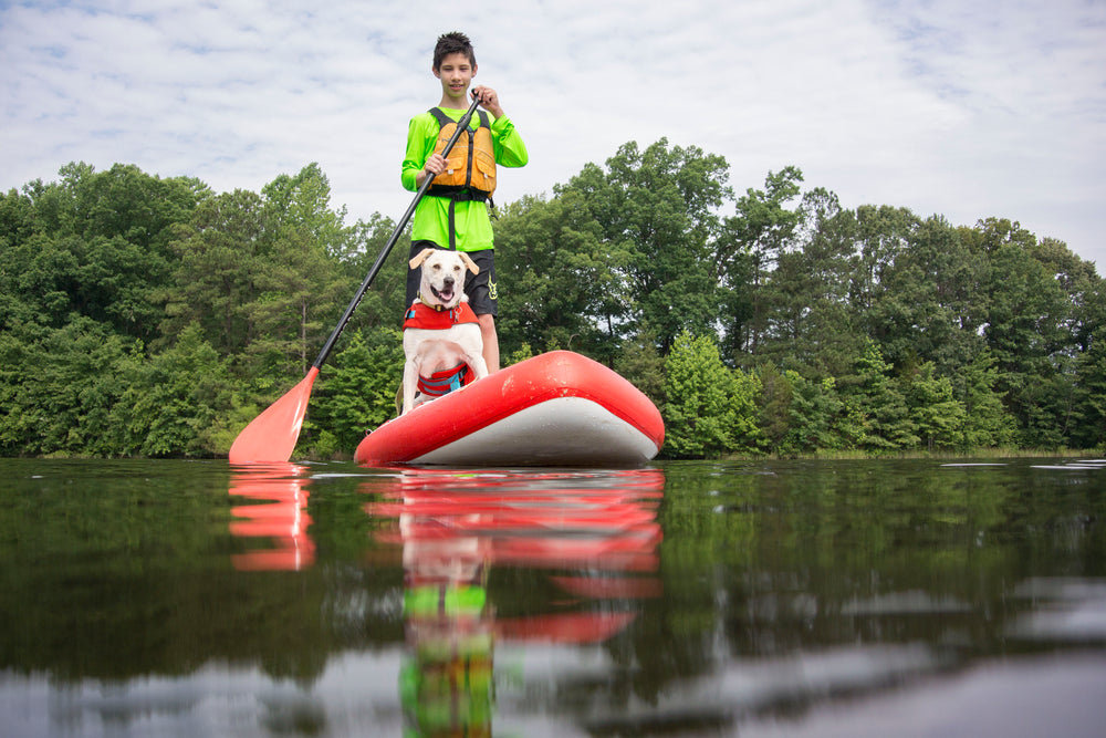 Hala Paddleboard with Dog