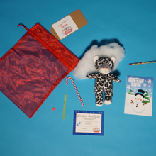Load image into Gallery viewer, Christmas Par-T-Pet Holiday Teddy making kit contents