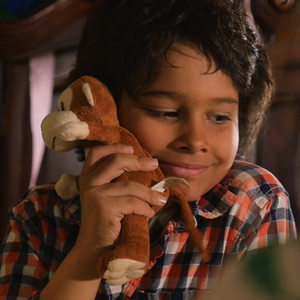boy with plush monkey