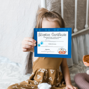 Child with adoption certificate for teddy bear