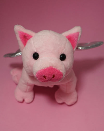 FLYING PIG PAR-T-PET