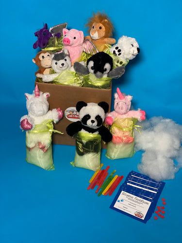 POPULAR SOCIAL DISTANCING OR VIRTUAL BIRTHDAY PARTY KITS WITH PLUSH TEDDY