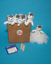 Load image into Gallery viewer, Husky Dog Plush Teddy making kit 5 pack