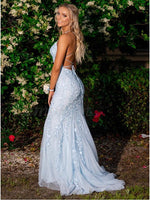 Mermaid Lace Prom Dress Sky Blue, Prom Dresses, Pageant Dress, Evening Dress, Ball Dance Dresses, Graduation School Party Gown, DT0681