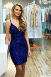Blue Homecoming Dresses, Short Prom Dress ,Back To School Party Dress, Evening Dress, Formal Dress, DTH0037