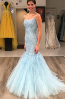 Fitted Prom Dress Spaghetti, Formal Dress, Evening Dress, Dance Dresses, Graduation Party Dress, DT0783