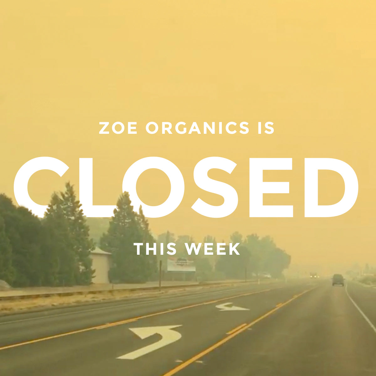 Zoe Organics is Closed