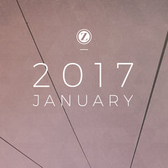 Zoe Organics Playlist for January 2017