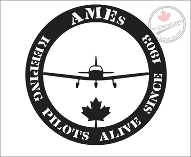'AMEs Keeping Pilots Alive Since 1903 -Private Aviation' Premium Vinyl Decal
