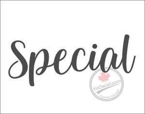 'Special - Relaxed Modern' Premium Vinyl Wall Decal