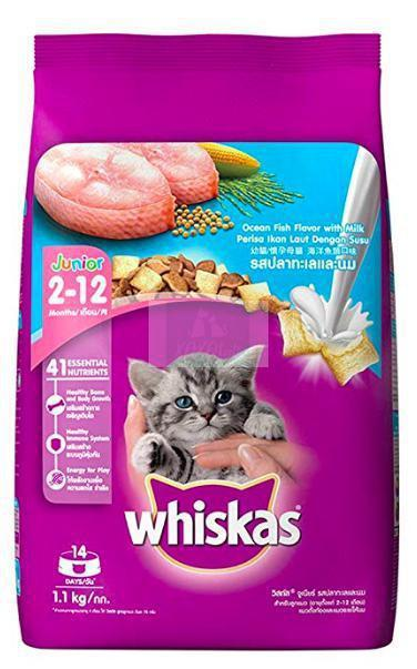 Whiskas KITTEN Dry Food, OCEAN FISH-Whiskas-XOXOtails