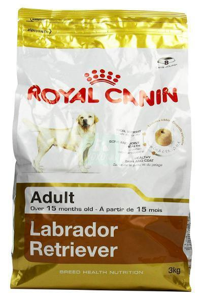 Royal Canin Labrador Adult Dog Dry Food-Royal Canin-XOXOtails
