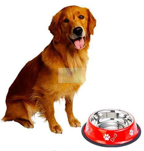 Coloured Steel bowl for Dogs-XOXOtails-XOXOtails