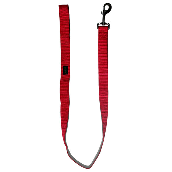 Basics Nylon Padded Leash for Dogs, Red & Grey