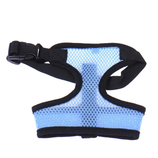 Pet Dog Harness Leash-pawproducts.net-Blue-L-pawproducts.net