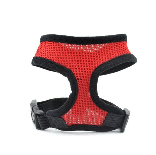 Pet Dog Harness Leash-pawproducts.net-Red-L-pawproducts.net