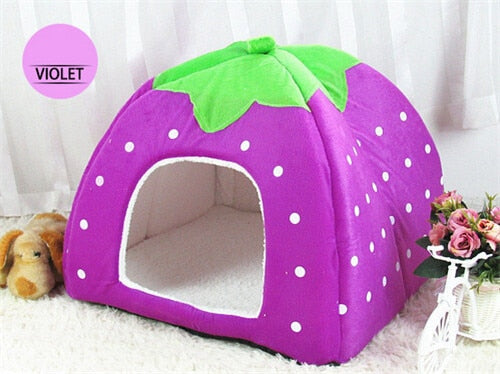 Cute Foldable Cat Kitten House-pawproducts.net-Purple-S-pawproducts.net