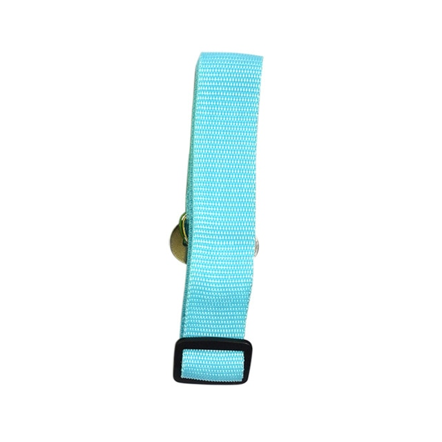 Car Seatbelt Harness-pawproducts.net-Sky Blue-Free Size-pawproducts.net