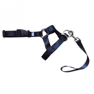 Nylon Dogs Head Collar-pawproducts.net-Black-S-pawproducts.net