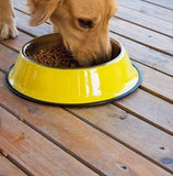Stainless Steel Pets Dog Bowl-pawproducts.net-Yellow-XS-pawproducts.net