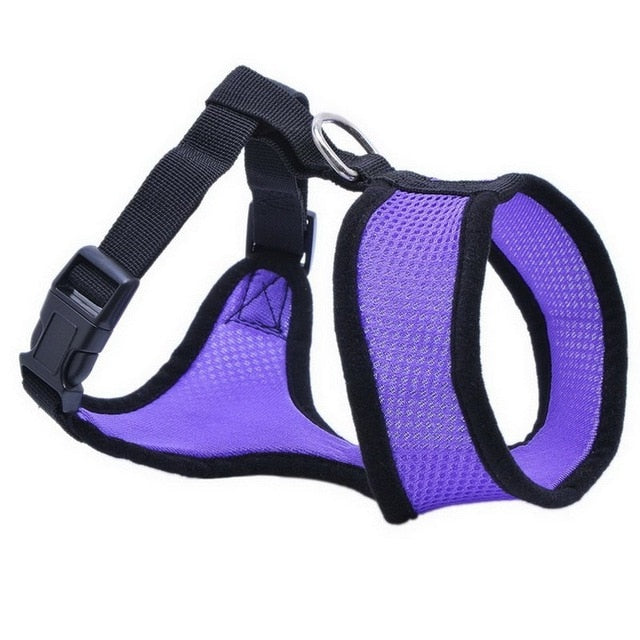 Dog Chest Breathable Dog Harness-pawproducts.net-purple-XS-pawproducts.net