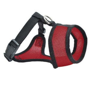 Dog Chest Breathable Dog Harness-pawproducts.net-red-XS-pawproducts.net