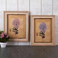 Two's Company Set of 2 Officina Naturalis Hydrangea Prints