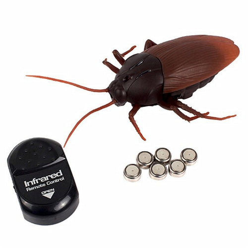 Remote Control  Cockroaches prank