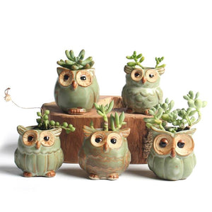 Owl Shaped Succulent Plant Ceramic