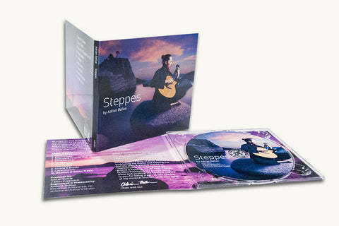 4 Panel Digipack Lite with CD Duplication