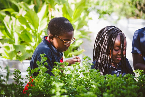 School children in a garden at The Wynwood Yard during a Food Justice field trip