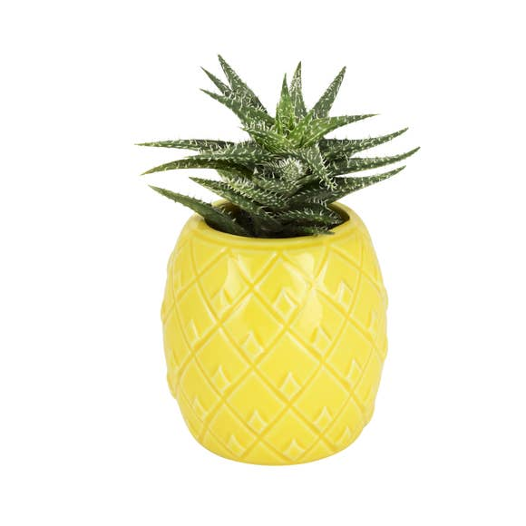 Mini Pineapple Planter