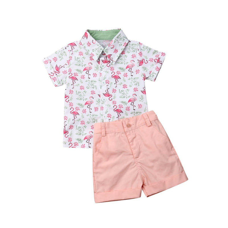 Dapper Flamingo Set ll