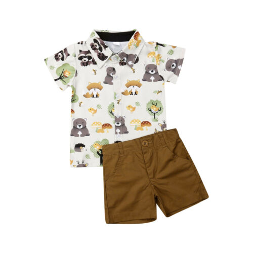 Dapper Bear Set