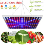 Hydroponics System Full Spectrum Plants Growing Lamp