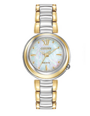 Citizen Ladies ECO-Drive Watch Style EM0337-56D