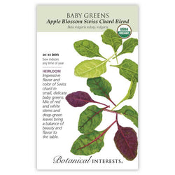 Baby Greens, Apple Blossom Swiss Chard Blend
